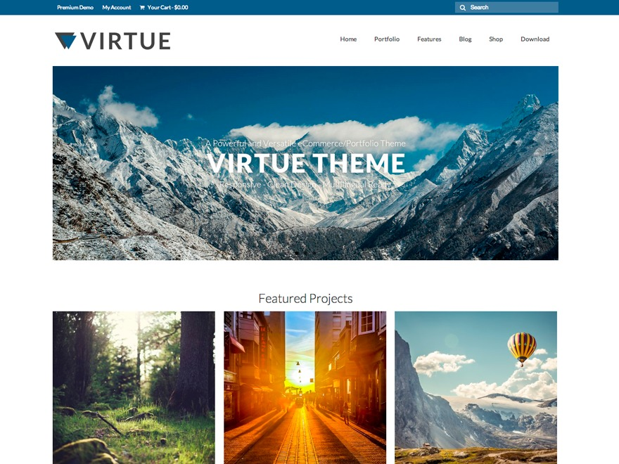 Virtue Child premium WordPress theme