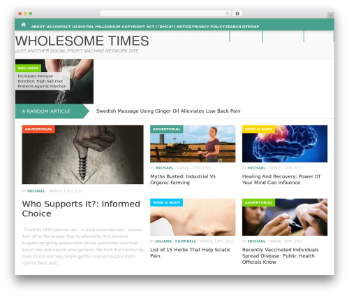 WordPress theme Codilight - wholesometimes.com