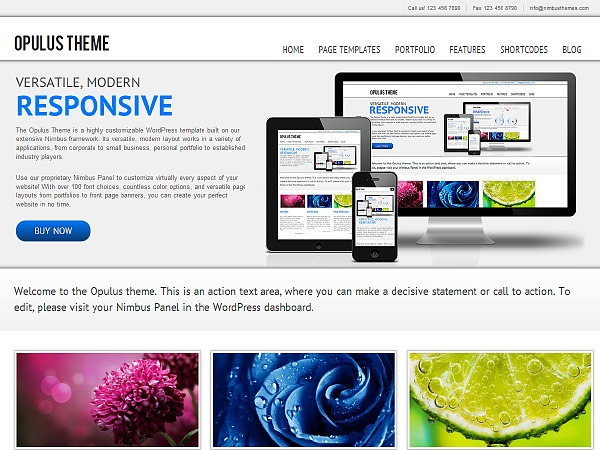 WordPress theme WP Opulus