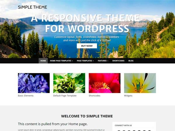 WP Simple Pro WordPress website template