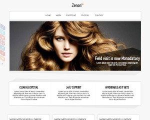 Zenon Lite WordPress template for business