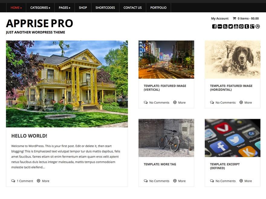 Apprise Pro WordPress website template