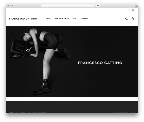 Aurum best WordPress theme - francescogattino.com