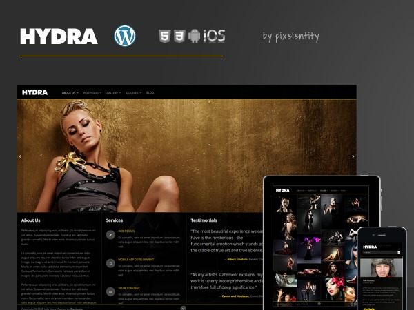 Hydra WordPress theme