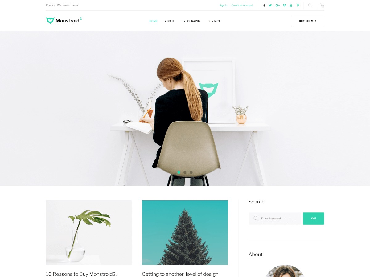 Monstroid2 Lite WordPress blog template