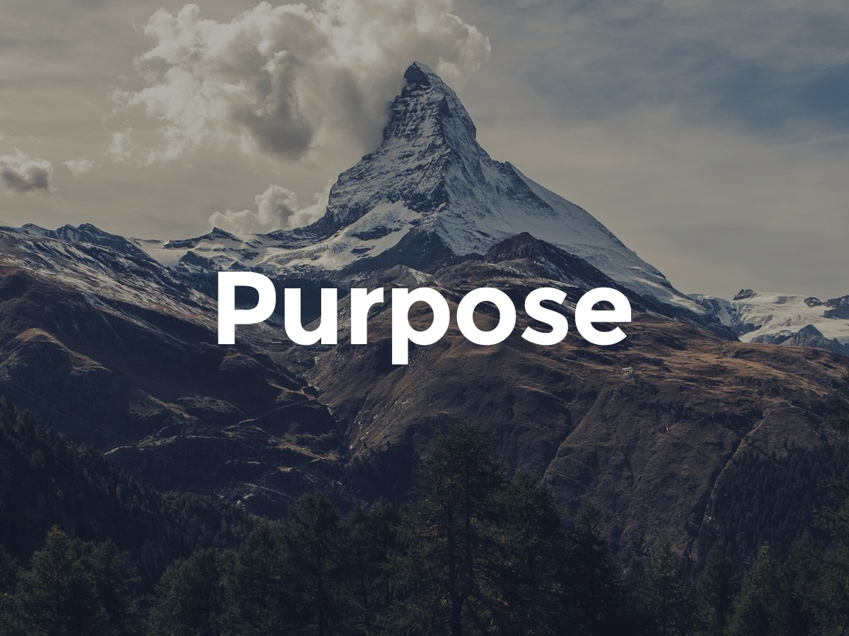 Organic Purpose business WordPress theme