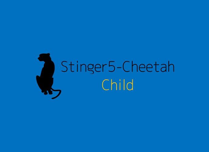 Template WordPress stinger5-cheetah-child