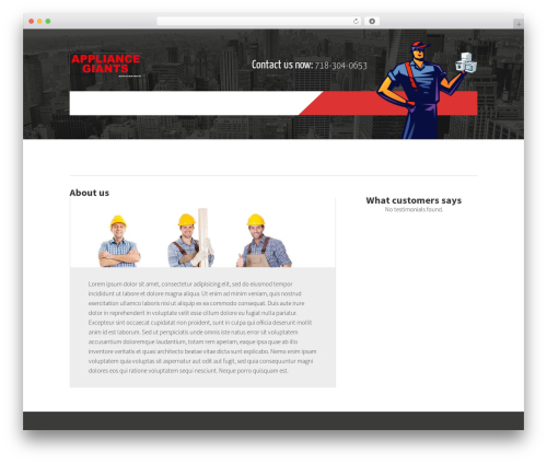 Template WordPress Constructzine Theme - appliance-repair-brooklyn-ny.com
