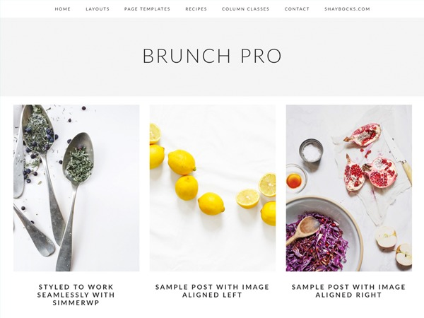 Best WordPress theme Brunch Pro