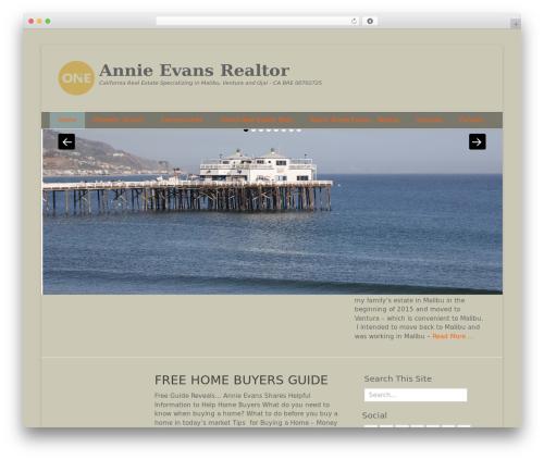 Catch Base Pro best real estate website - annieevansrealestate.com