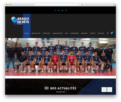 WordPress website template BigSlam - aragodesete.fr
