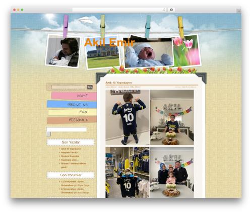 Children and Toys theme WordPress - akilemir.com