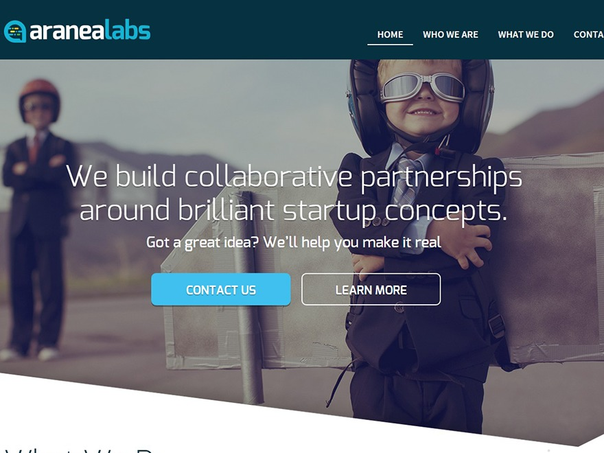 aranealabs WordPress website template