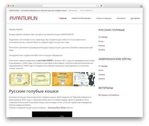 Emmet Lite WordPress theme - avantiurun.ru