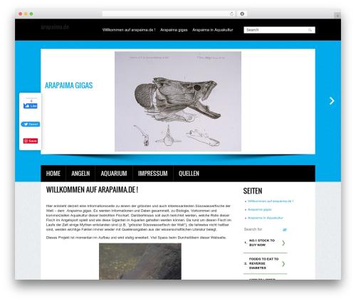 WP theme Creation - arapaima.de