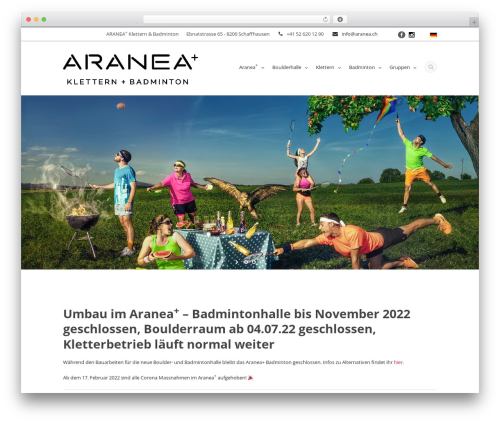 Flawless WordPress template - aranea.ch