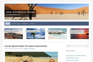 Slim WordPress Theme WordPress blog theme