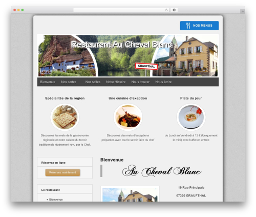 Gridiculous theme WordPress - auchevalblanc.net