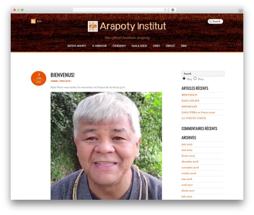 Pinshop WordPress website template - arapoty-institut.com