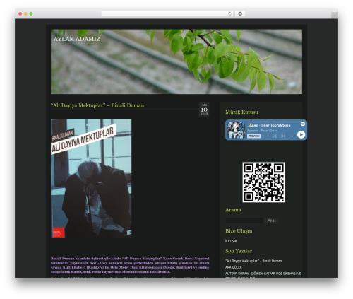 Free WordPress My Quicktags plugin - aylakadamiz.com