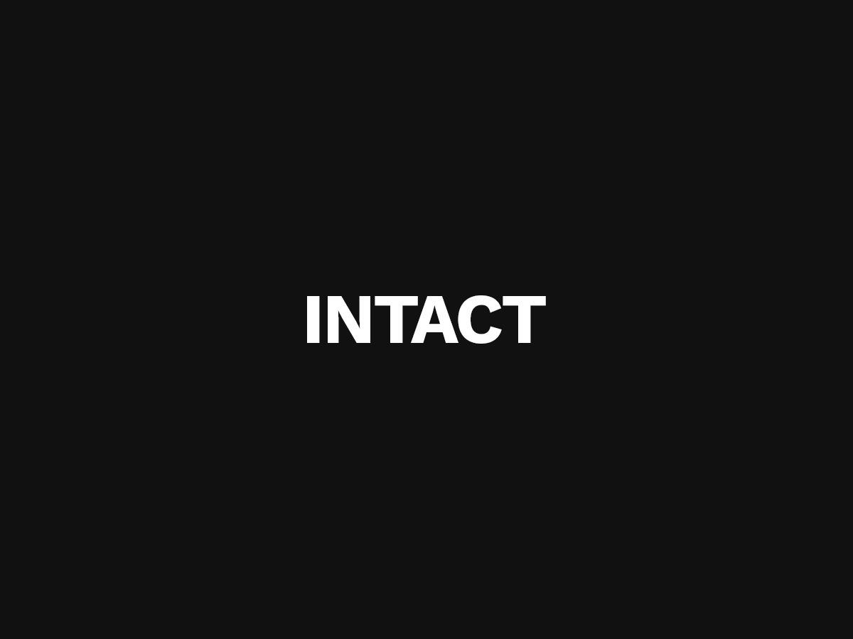 Intact best WordPress theme