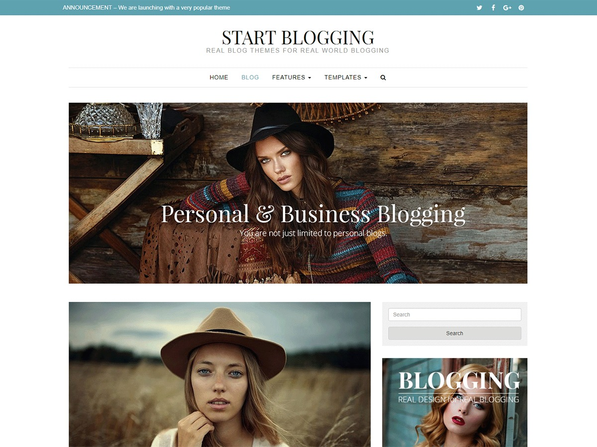 Start Blogging WordPress theme image