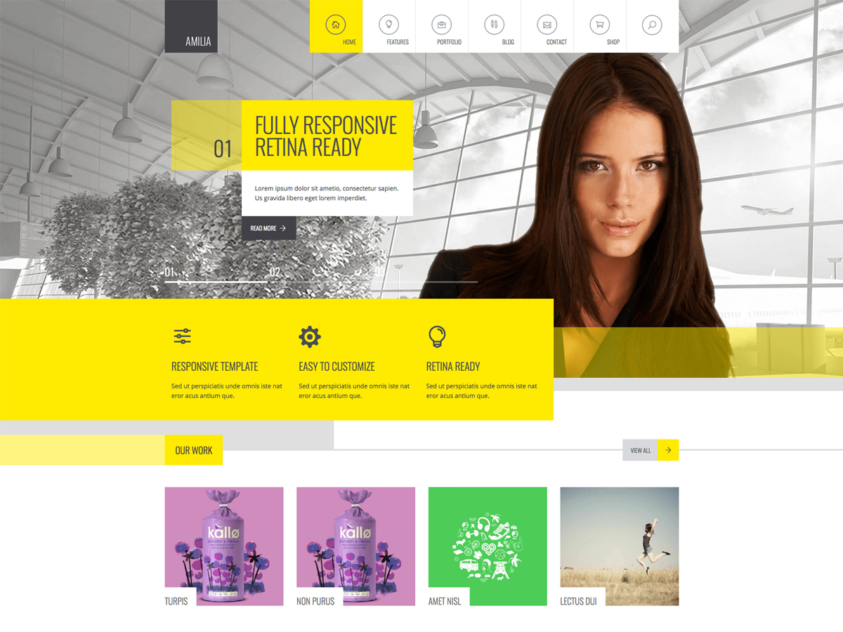 Template WordPress Wp Amilia