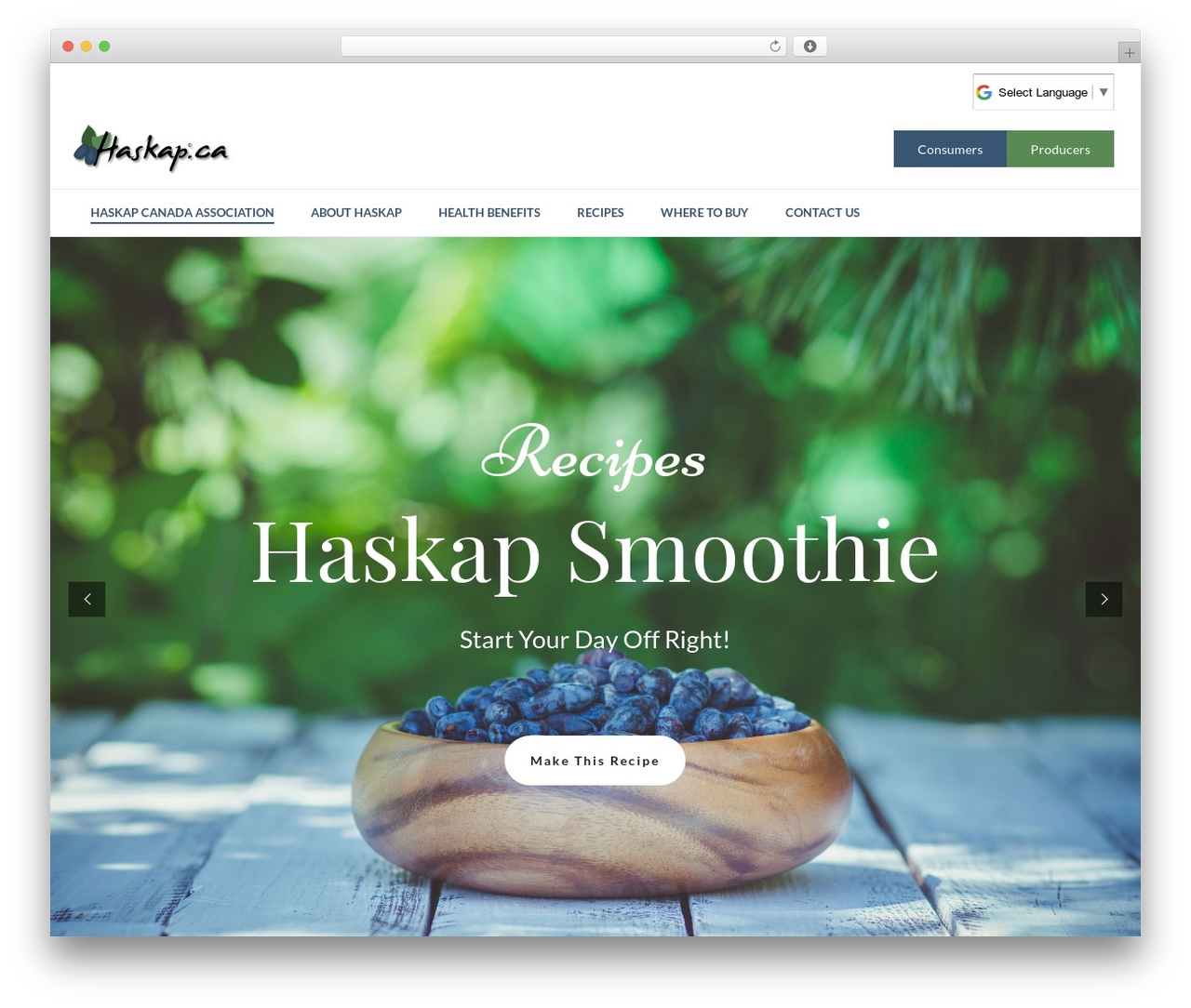 Jupiter WordPress theme design - haskap.ca