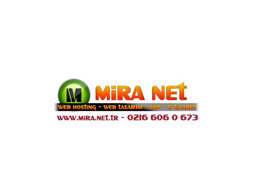 Mira Net WordPress Theme Design 1