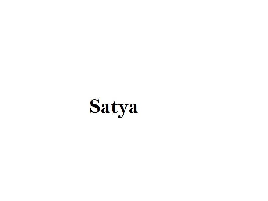 satya WordPress website template