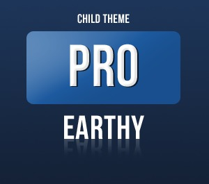WordPress theme Pro Framework - Earthy