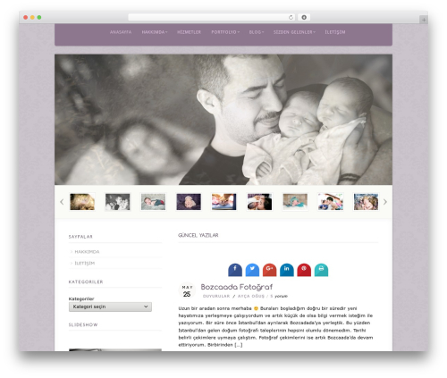 WordPress website template Acoustic - aycaogus.com