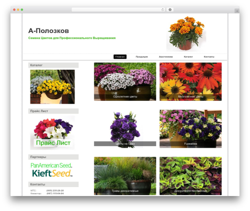 Simple Grid Theme Responsive WordPress template - a-polozkov.com