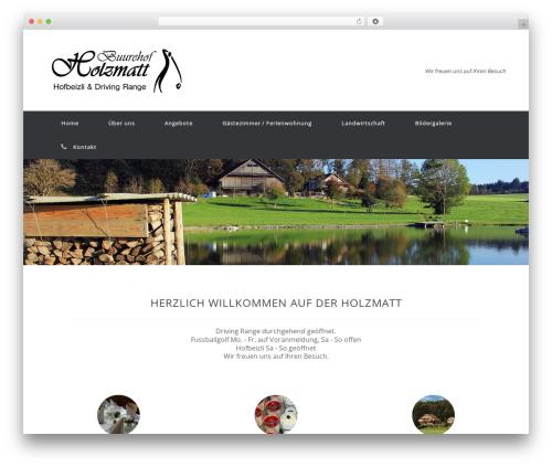 WordPress dmsguestbook plugin - holzmatt.ch