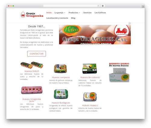 Template WordPress Divi - huevosuriagereka.com