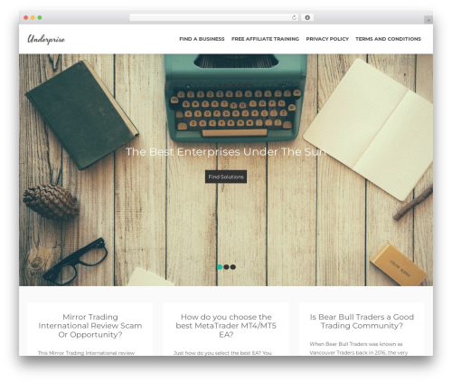 Bazaar Lite best free WordPress theme - underprise.com