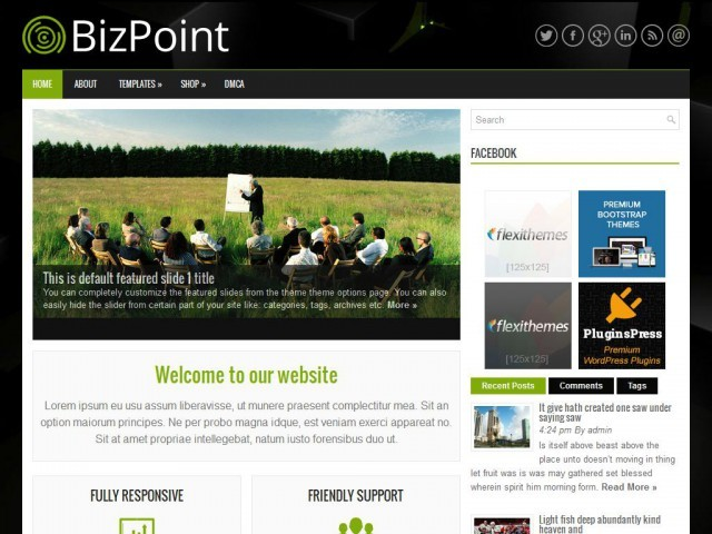 BizPoint theme free download