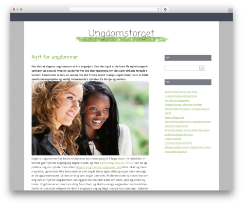 Gray Chalk best WordPress template - ungdomstorget.net