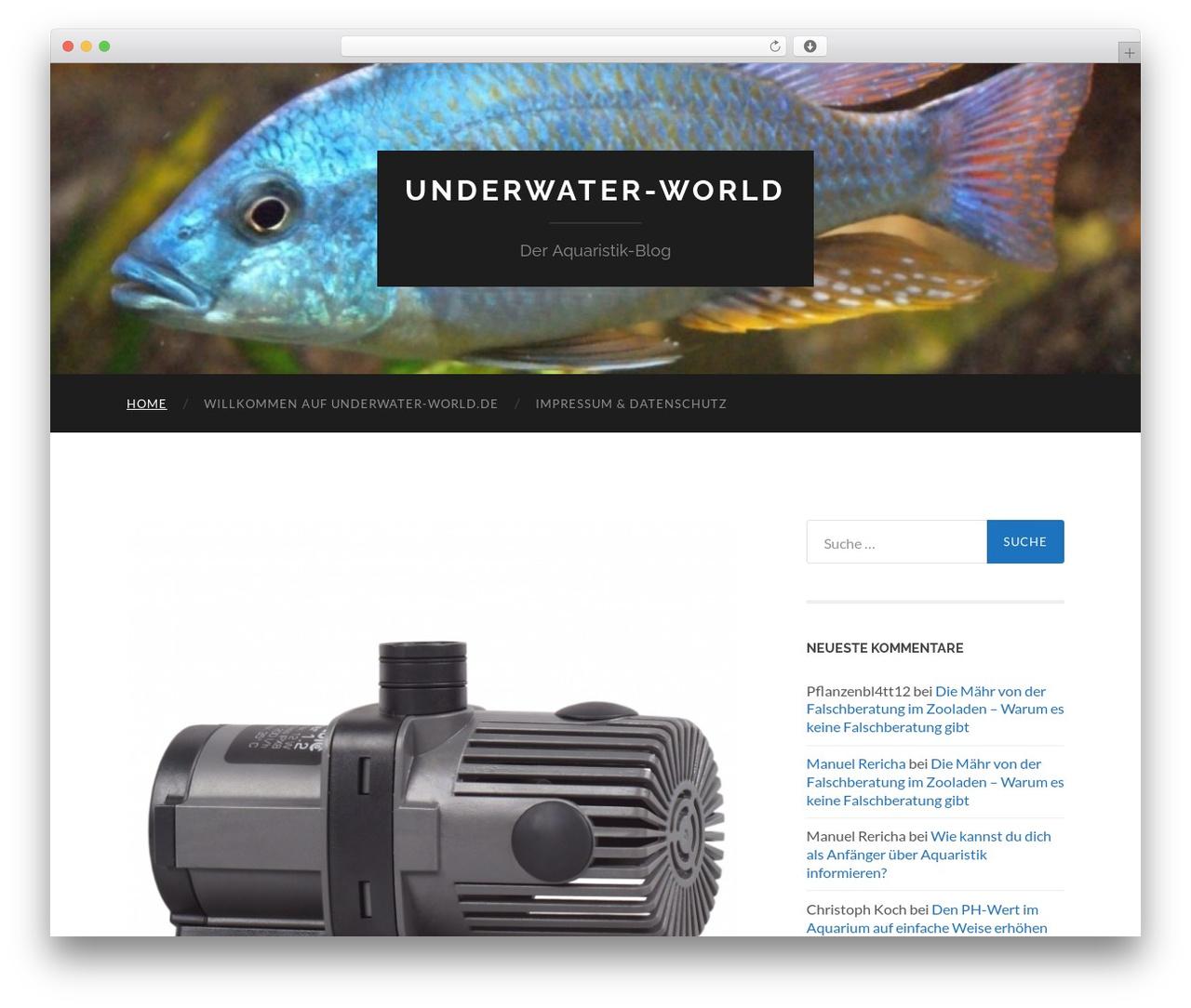Hemingway WordPress blog template - underwater-world.de