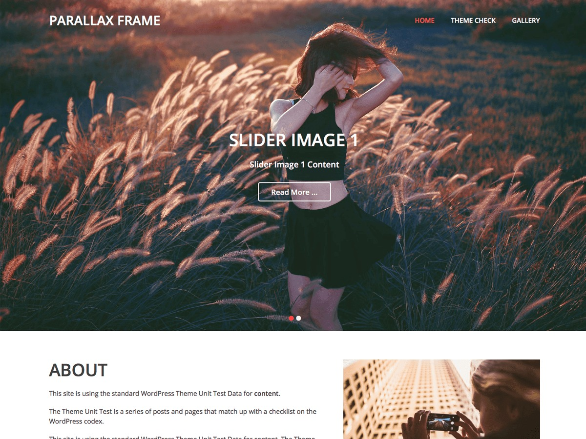 Parallax Frame WordPress template for business