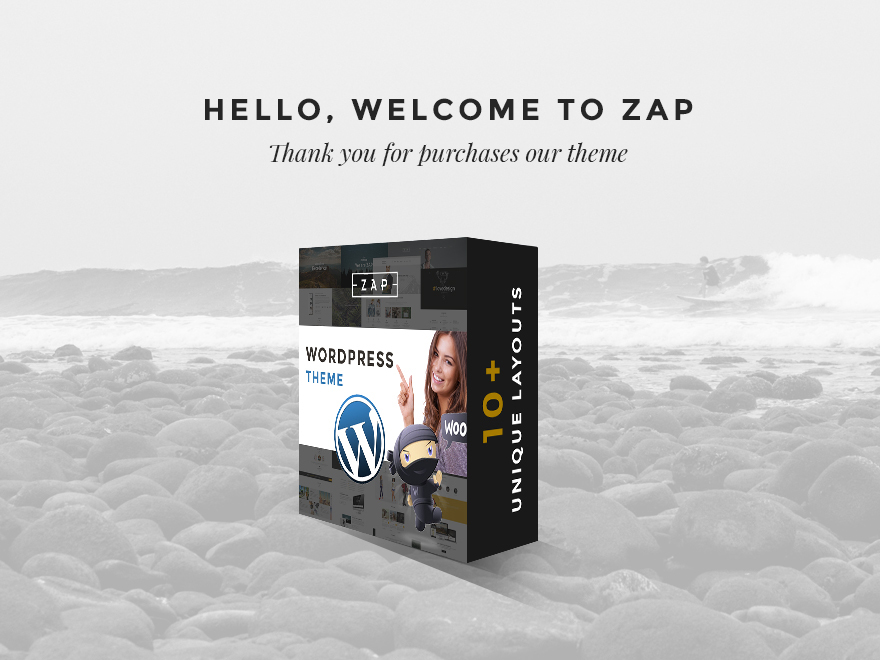 Theme WordPress Zap