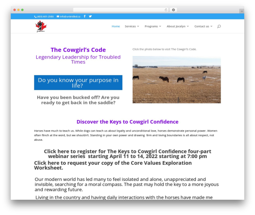 WordPress theme Divi - unbridled.ca