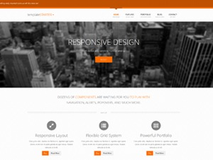 WP Starter WordPress theme