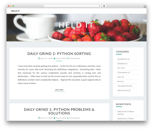 WordPress theme Nisarg - heldit.com