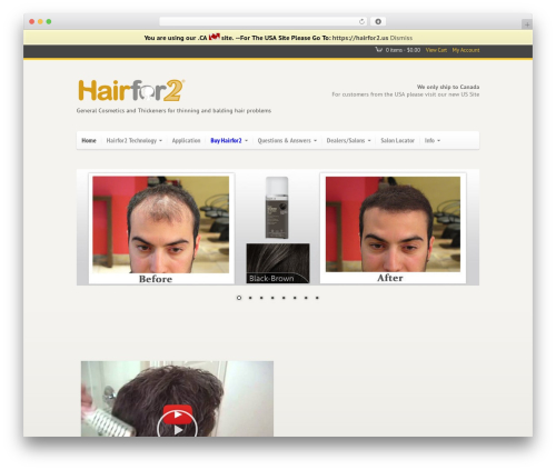 WordPress website template Agora - hairfor2.ca