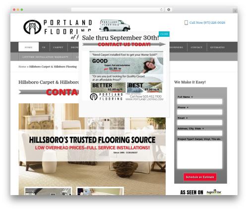 Appointway Pro Theme WordPress theme - hillsborocarpet.com