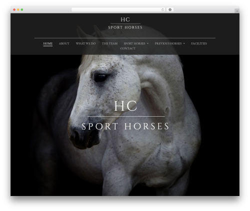 Lion - WordPress Theme best WordPress theme - hcsporthorses.com