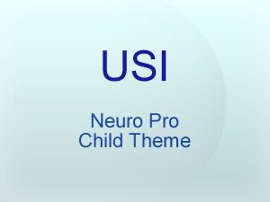WordPress theme neuropro-child