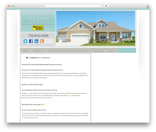 Concise real estate template WordPress - homesalesbyterry.com