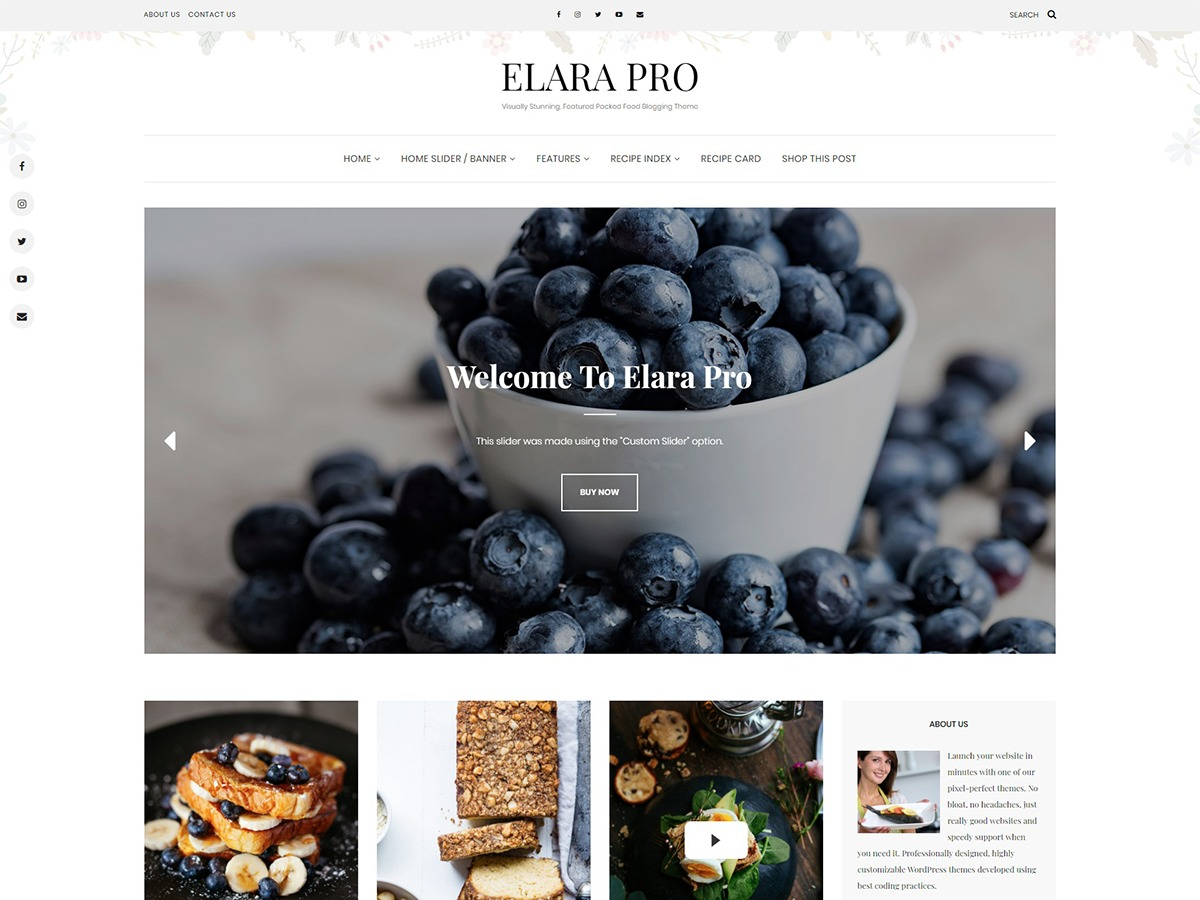 Template WordPress Elara Pro